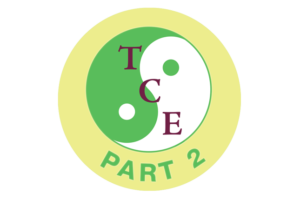 Adapted Tai Chi Exercises Course – Part 2